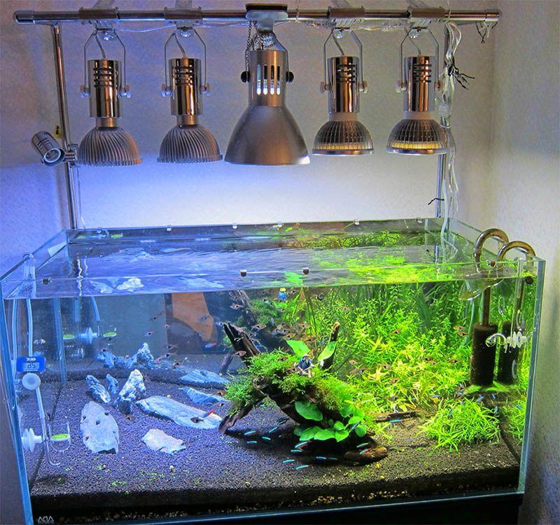 Best Aquarium Lamp 10 Gallon Aquarium Heat Lamp Aquarium Lamp