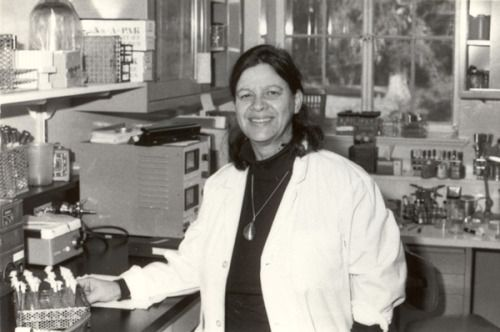 Today's STEM Girl is Esther Lederberg.  She was the first to solve the problem of reproducing bacterial colonies en masse with the same original geometry using a technique known as replica plating.  Her method was simple, using only a specific type of velvet.  Much of the credit for her discoveries went to her husband, Joshue.