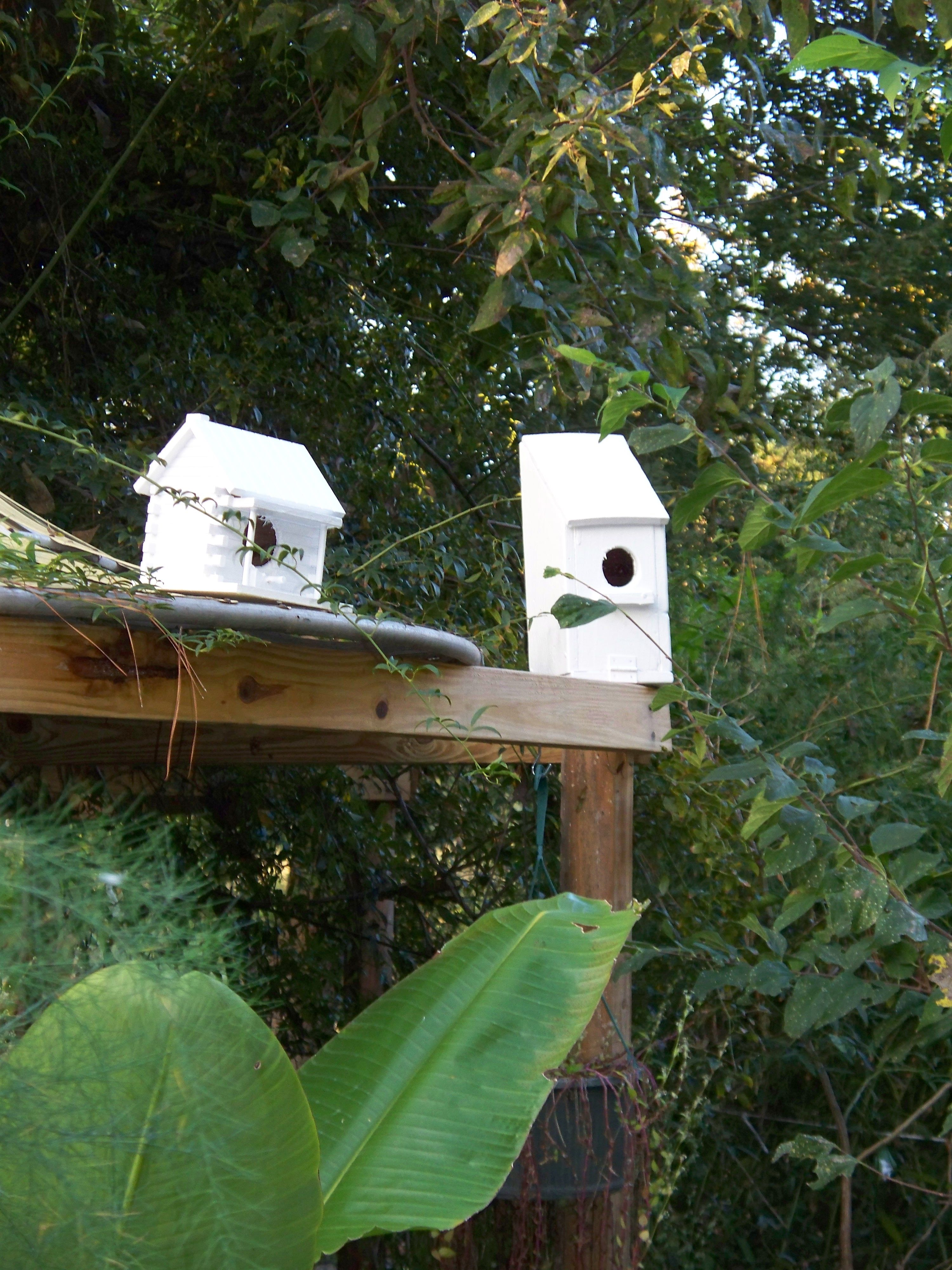 Two birdhouses that I got at a thrift store and painted and drilled to enlarge the doors.