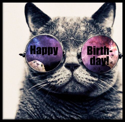 Happy birthday wishes and birthday quotes picture to wish happy - Happy Birthday Cool Cat Happy Birthday Pinterest