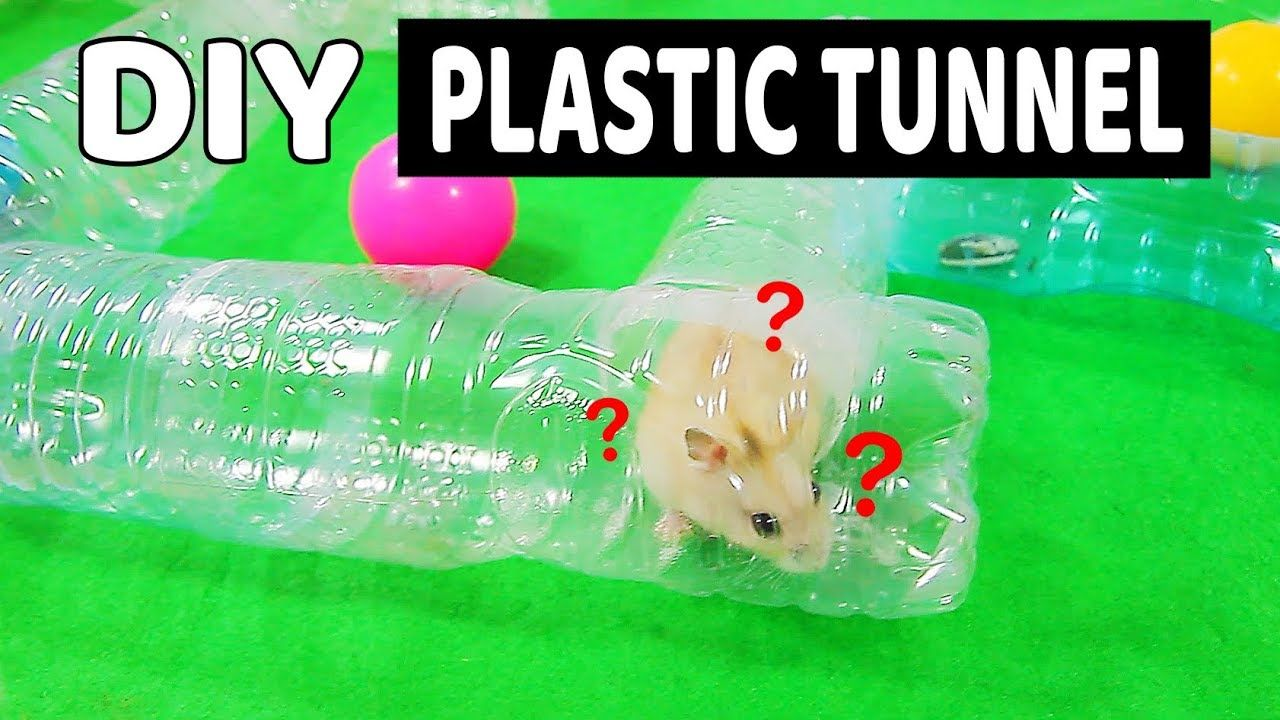 Making Tunnel For Hamster From Old Plastic Water Bottles Diy Hamster Toys Diy Hamster Toys Hamster Toys Hamster Diy