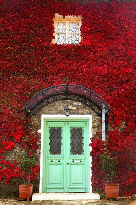 Statement mint green doors for contrast against the red leaves.