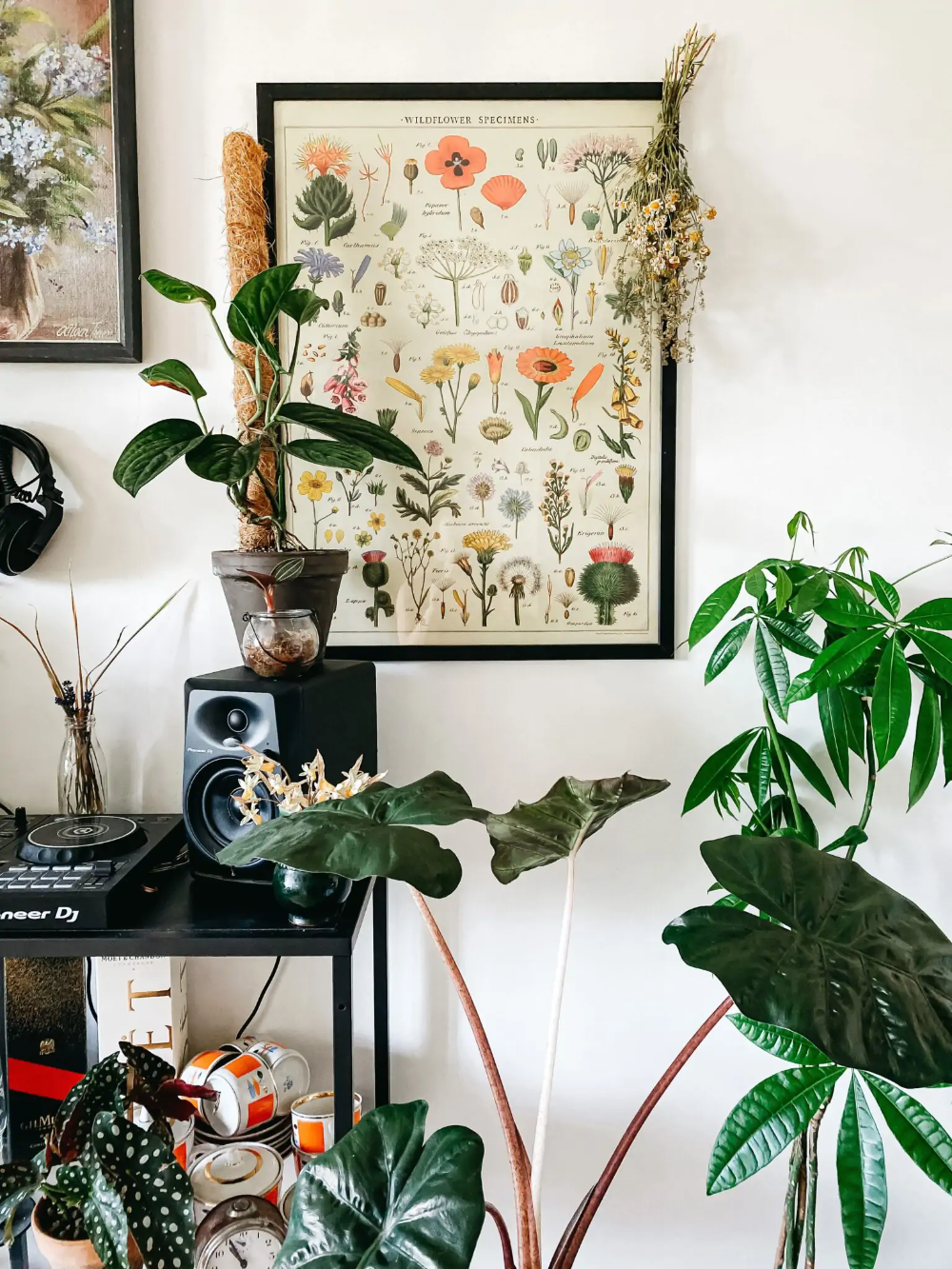 10 X Originele Wanddecoratie Tips Inspiratie Girls Who Magazine Plantendecor Kamerplant Decor Bordenhangers