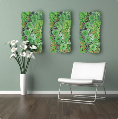 Stunning Living Wall Of Succulents; Hang It Outside In