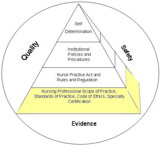 Model Of Professional Nursing Practice Regulation 2006