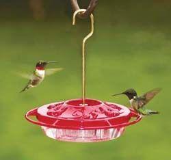 Hummingbird Feeders Asheville Nc Humming Bird Feeders Wild Birds Unlimited Bird Feeders