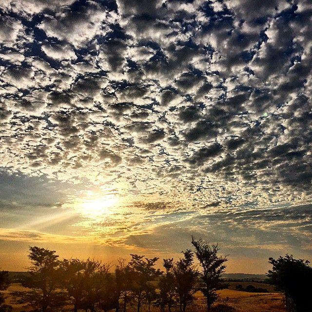 Buenos días. #clouds #heaven #morningbell #arroyomolinos #madrid #sunset #skyporn #tagsforlikes #sun #pretty #madrid #madridmemola #madridmolamazo #skyporn