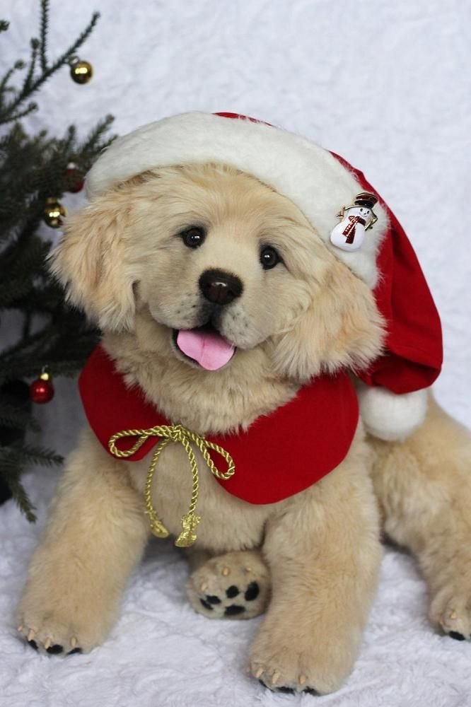 Puppy golden retriever Joy by Nadintoys on Best pets for