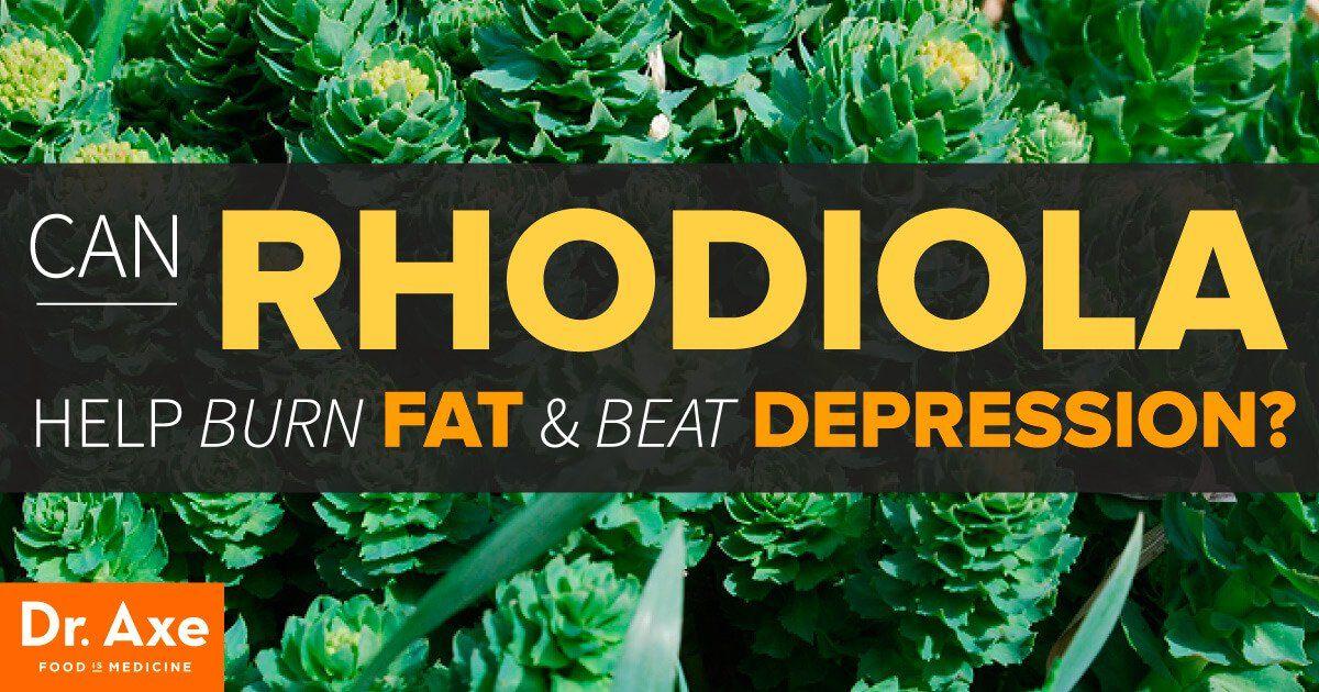 rhodiola fat burning