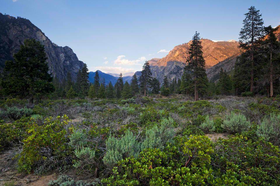 Kings Canyon National Park California Cedar Grove Kalifornien Nationalparks