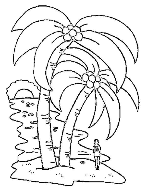 A Big Coconut Tree Coloring Page Tree Coloring Page Coconut Tree Drawing Palm Tree Drawing