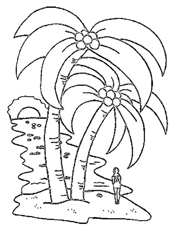 A Big Coconut Tree Coloring Page Tree Coloring Page Coloring Pages