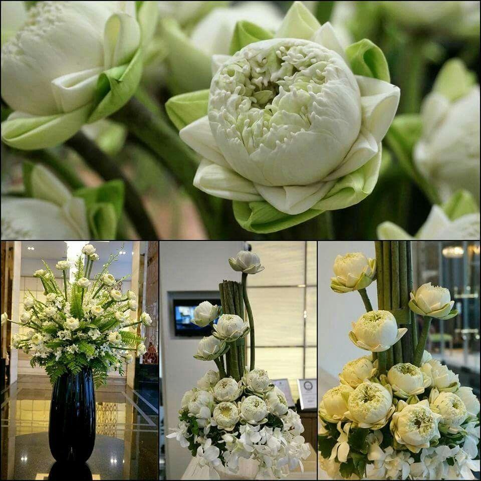 Pin By Flowers In Heart On Lotus Wedding Flowers Wedding