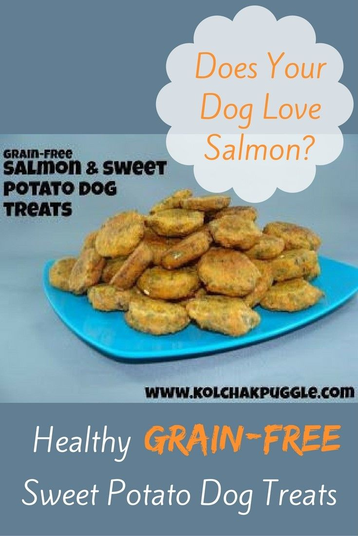Diy Dog Food Recipe W Fish And Sweet Potato Dog Food Recipes