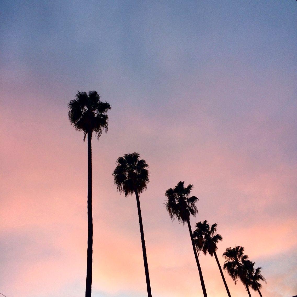 California Sunset Stilettobeats California Sunset Skin