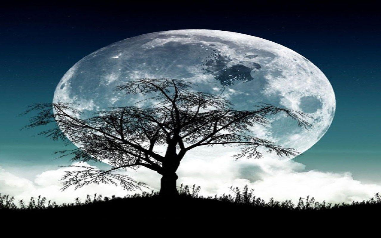 Amazon.com: beautiful Moon light live Wallpaper: Appstore ...