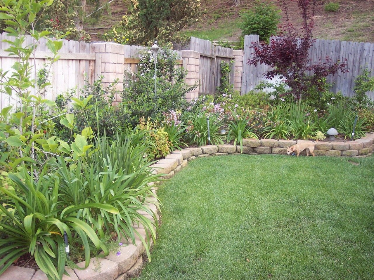 Inexpensive Backyard Landscaping Ideas garden design for beautiful home design, simple backyard