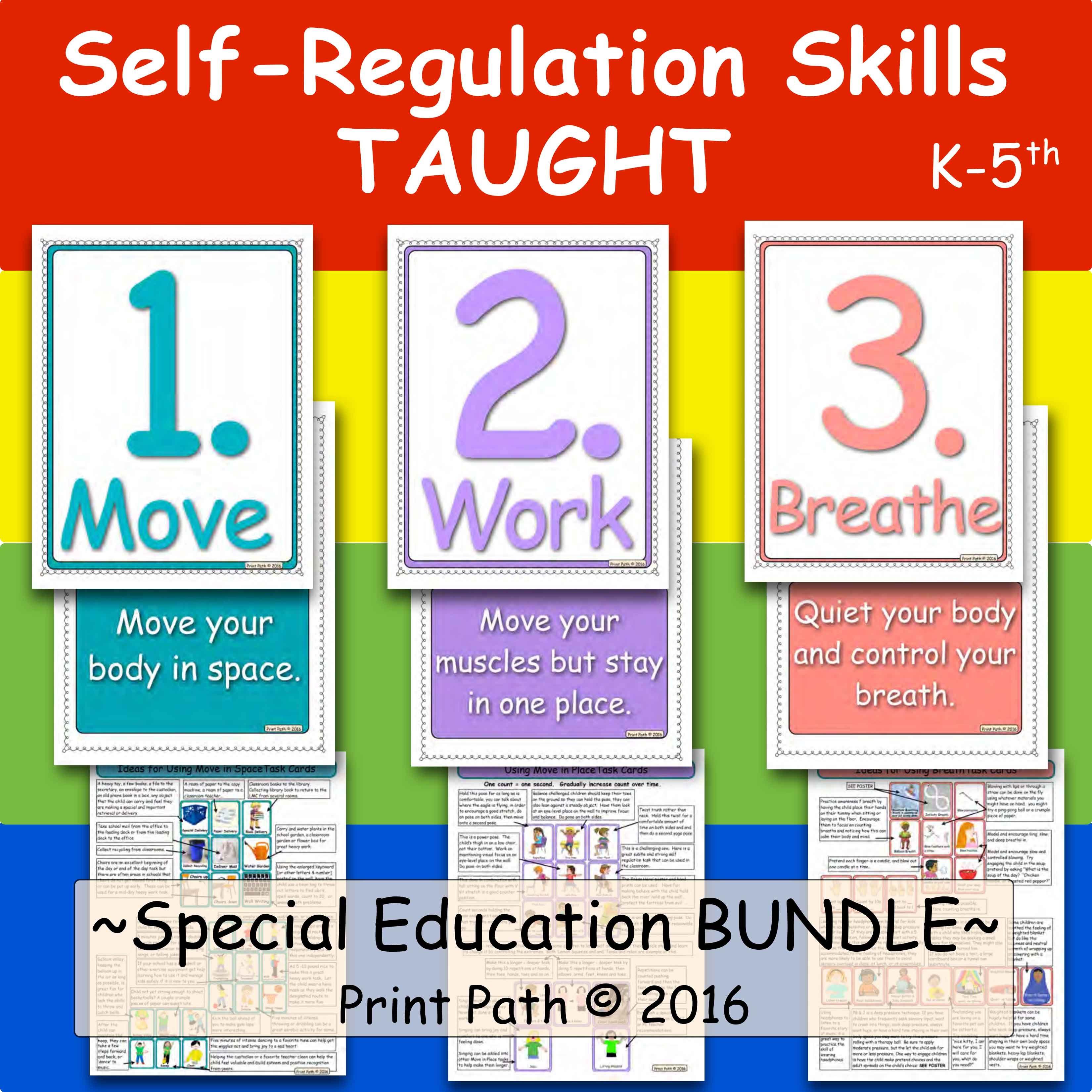 Self Regulation Skills Taught