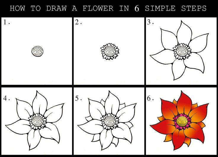 Objects Flower Drawing Tutorials Flower Drawing Easy Flower Drawings