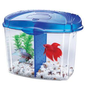 Aqueon betta bowl starter kit aquariums petsmart for Petsmart fish tank stand