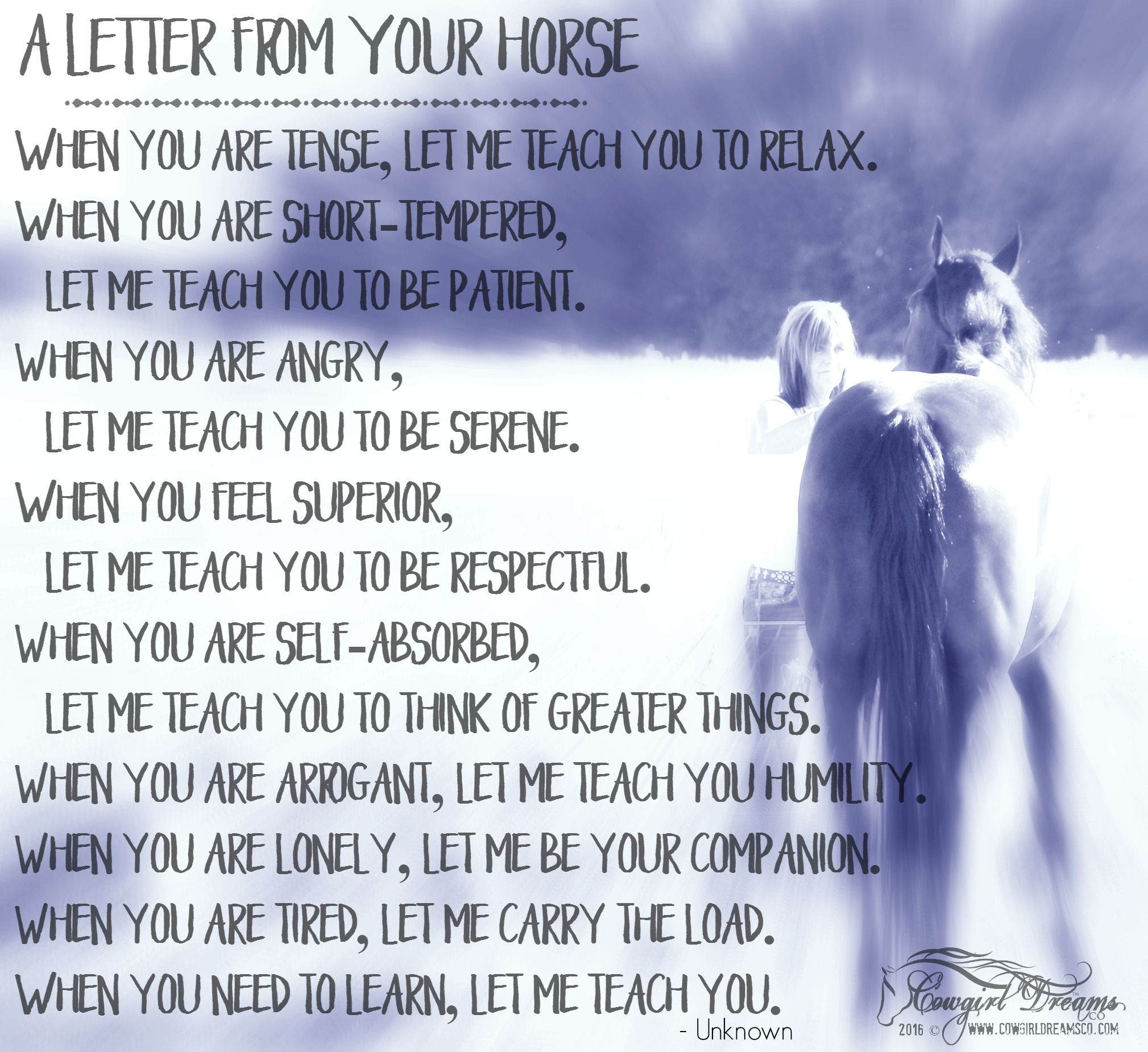 Pics photos quote i wrote for my horse com account s equestrian - Quotes On Losing A Horse Quotesgram Horses Pinterest Horse Equestrian Quotes And Dressage