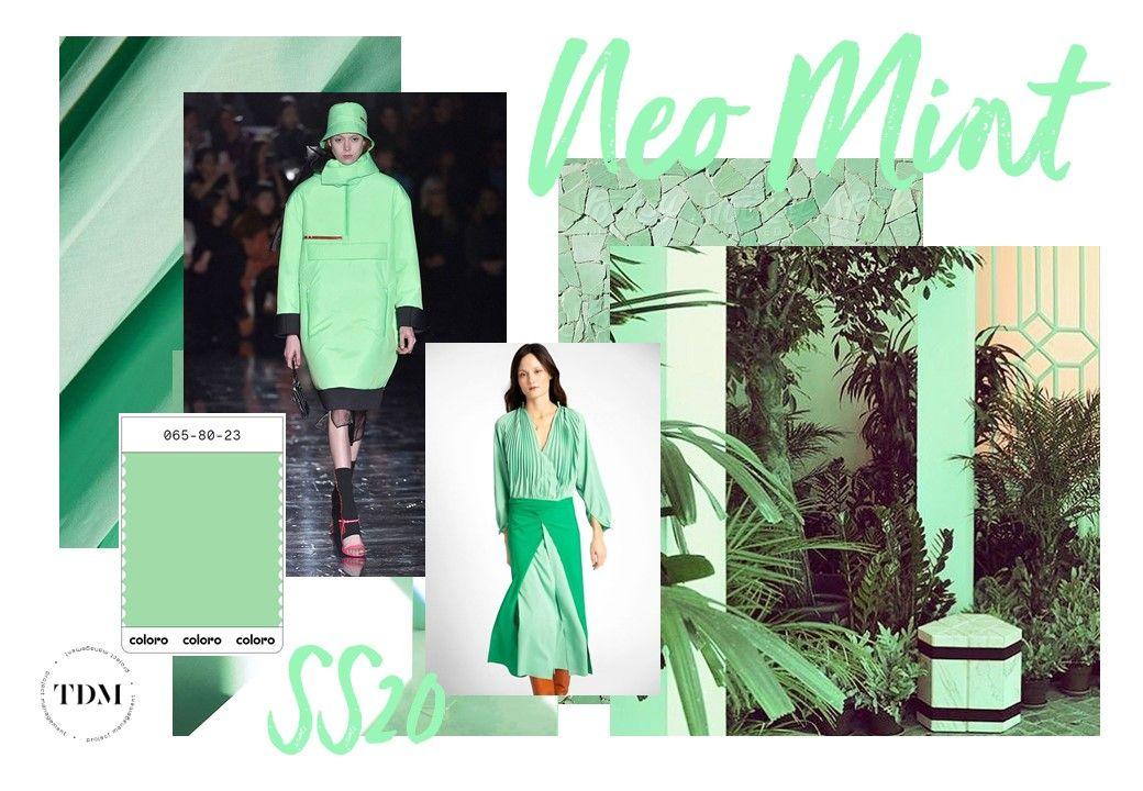 vert néo mint couleur à la mode 2019-2020