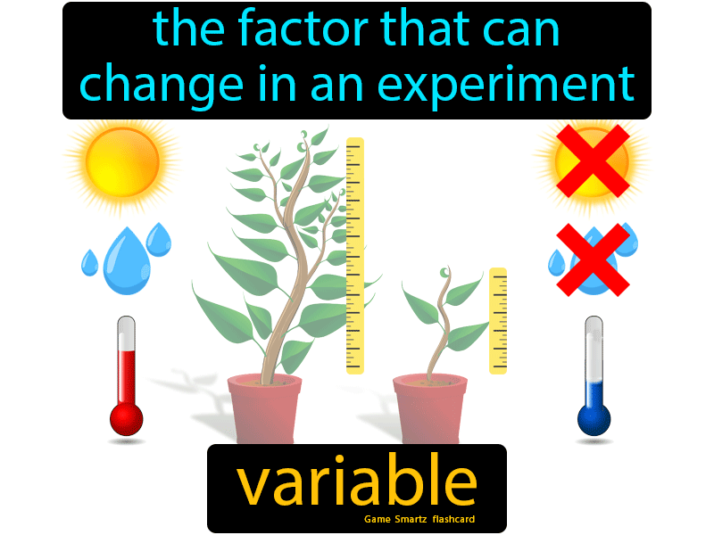 Variable Easy Science Variables Easy Science Experiments