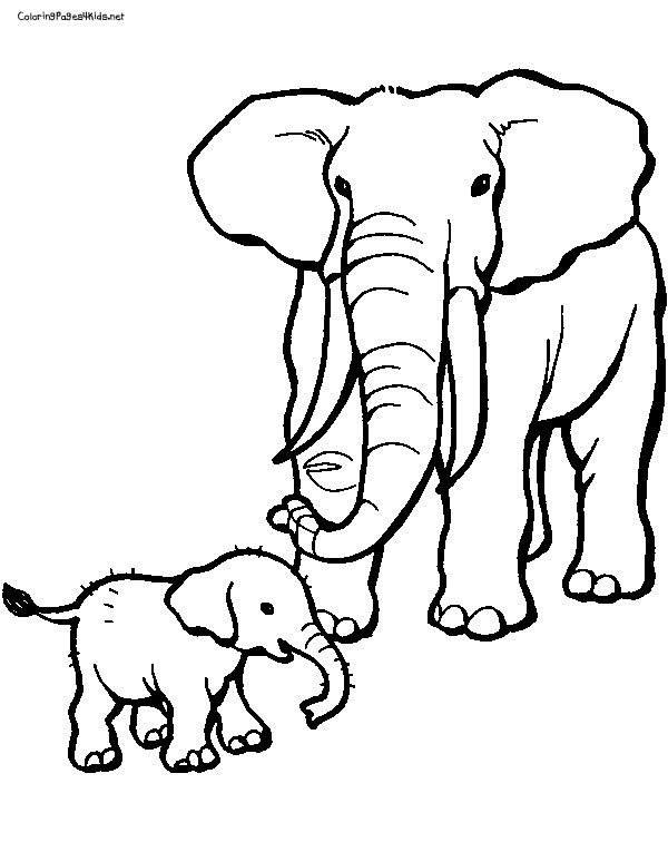 elephant coloring pages coloring pages for kids - Baby Elephant Coloring Pages