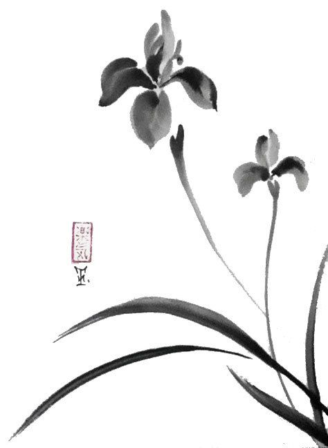 Original Japanese art Serene irises sumi-e drawing by ZenPresent