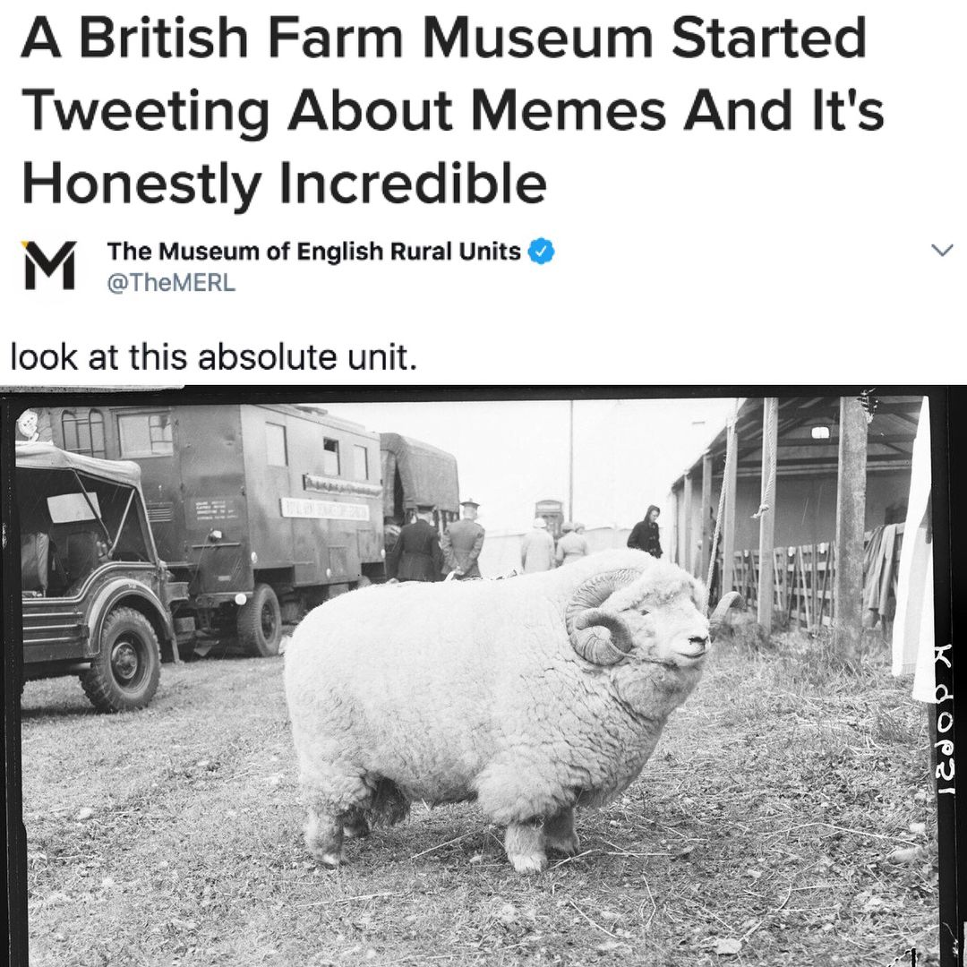 Last Week The Museum Of English Rural Life In Reading England Which Is Usually Devoted To Documenting The History Of The English Funny Memes Memes The Unit