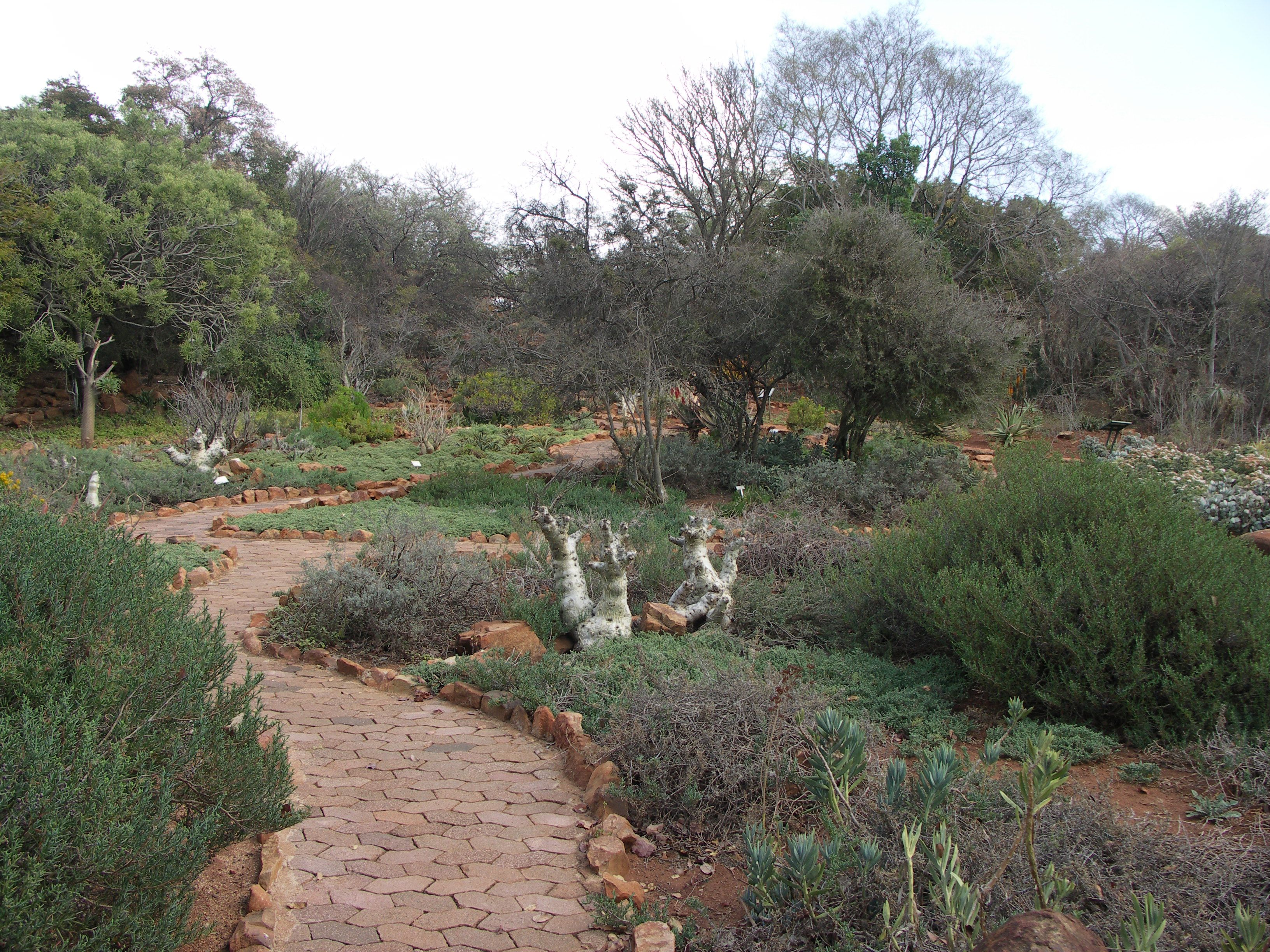 Pretoria South Africa This Is A Picture Of Their National Botanical Gardens National Botanical Gardens South Africa Africa