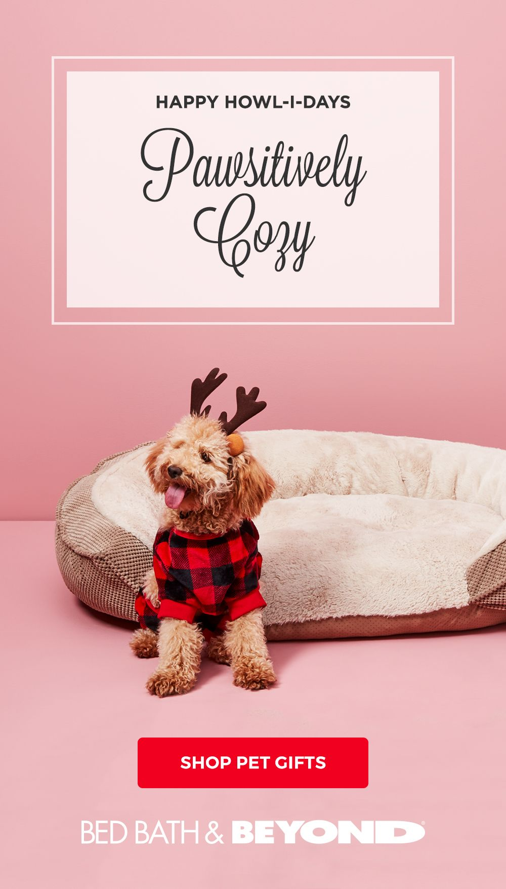Pin on { Waggy Tails DOG Group Board }