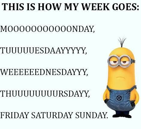 This is so true   The weekend passes so fast, but the week is so