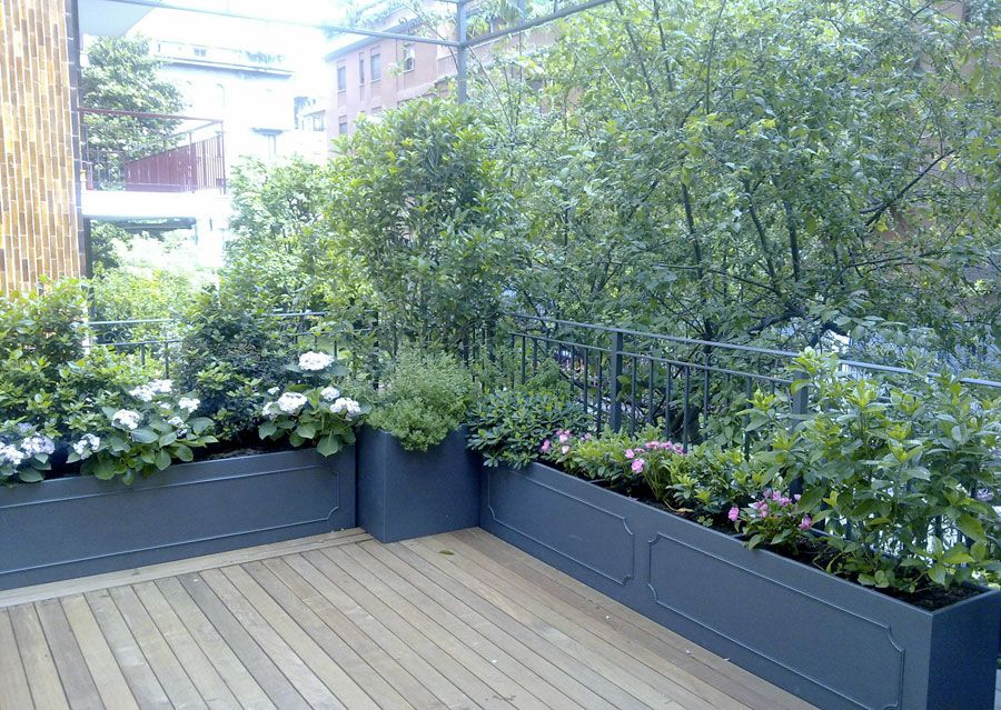 Image result for piante verdi per terrazzo in ombra  Arredo verde terrazzi  Pinterest ...