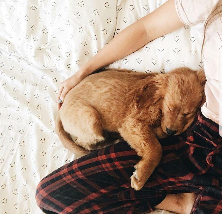 Photo of Pijama Hansis y Jori – visiones del paquete – #Hansis #Jori #RudelVisions …