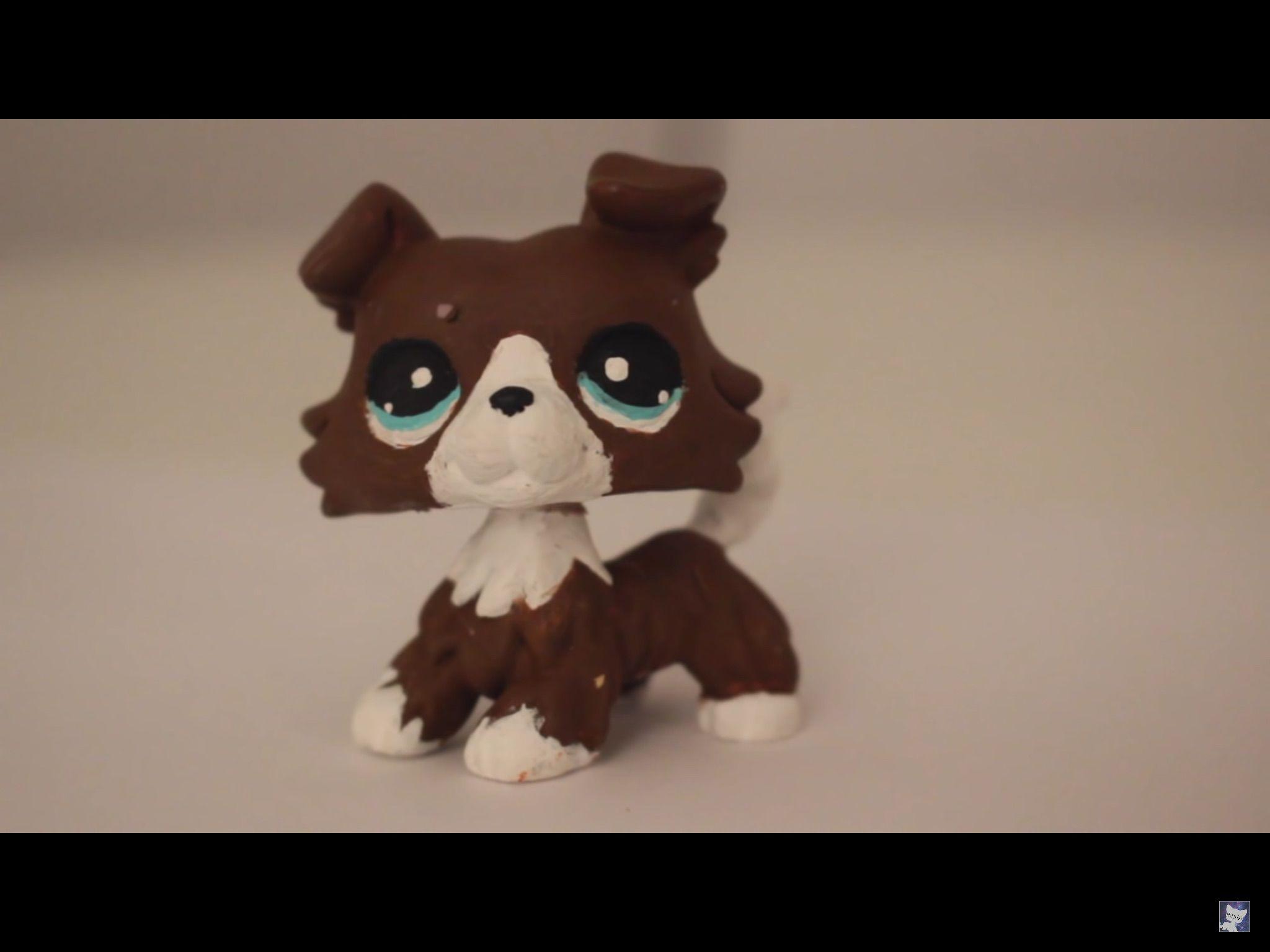 Pin By Quackk On Littlest Pet Shop Customs Pet Shop Little Pet