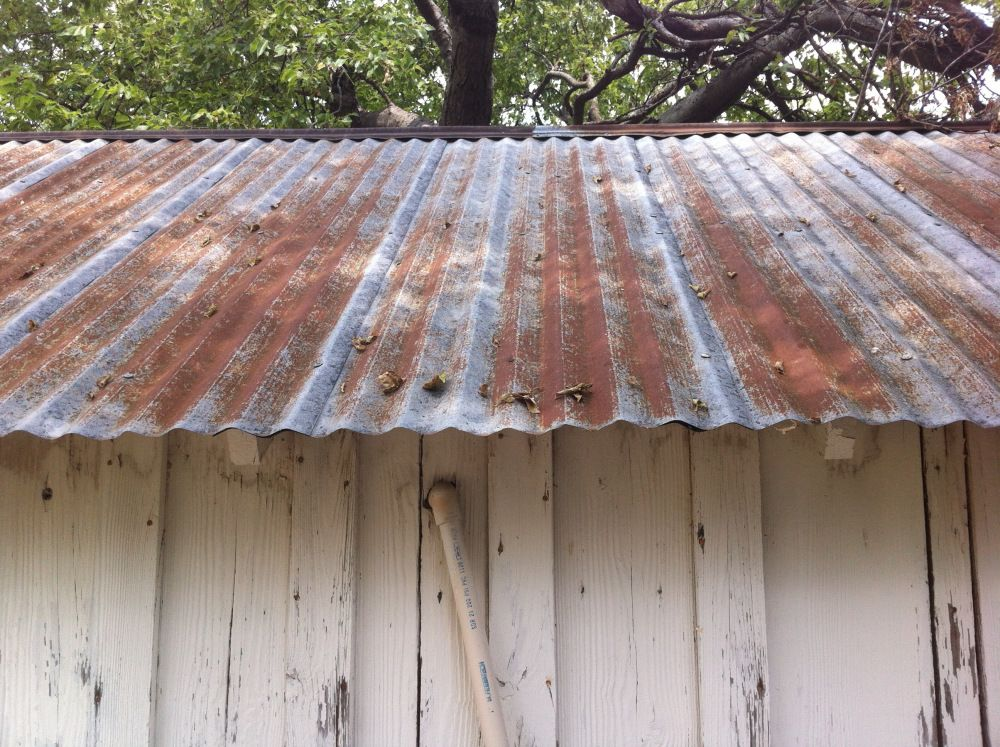 The Cavender Diary Tin Shed Corrugated Metal Roof Tin Roof