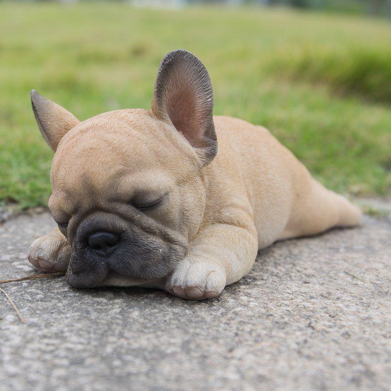 Sleeping Puppy Statue Franzosische Bulldoggenbabys Niedliche Tierbabys Franzosische Bulldogge