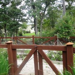 Traditional Vegetable Garden Fence Design, Pictures, Remodel, Decor and Ideas - page 60