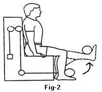 top 10 exercises for arthritis of knee arthritisexercises