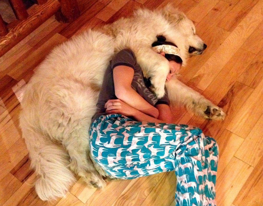 Image result for site:pinterest.com cuddling dog