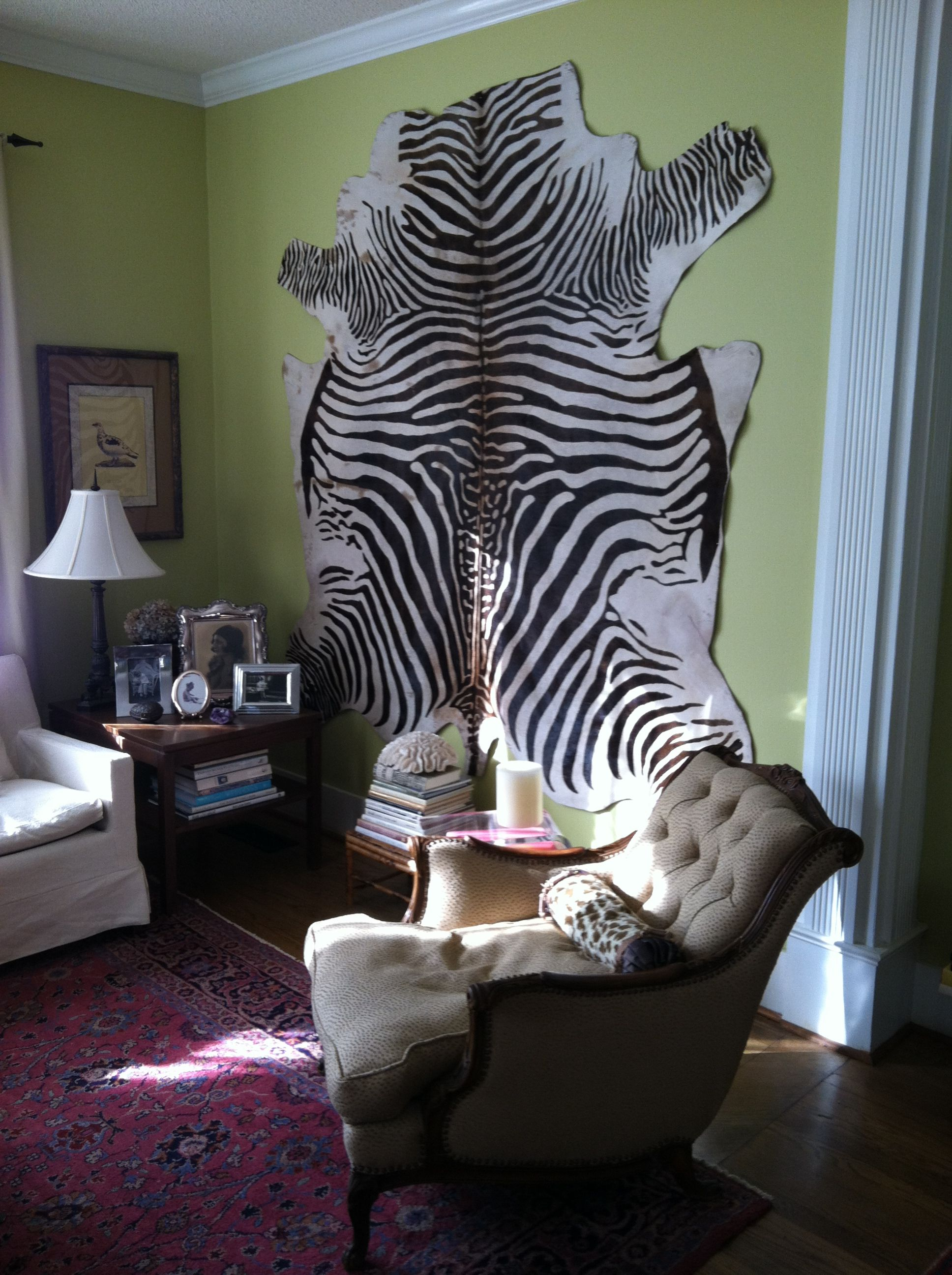 Zebra skin in wall | Zebra, Decor