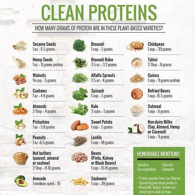 How Many Grams Of Protein Are In Your Favorite Plant Foods