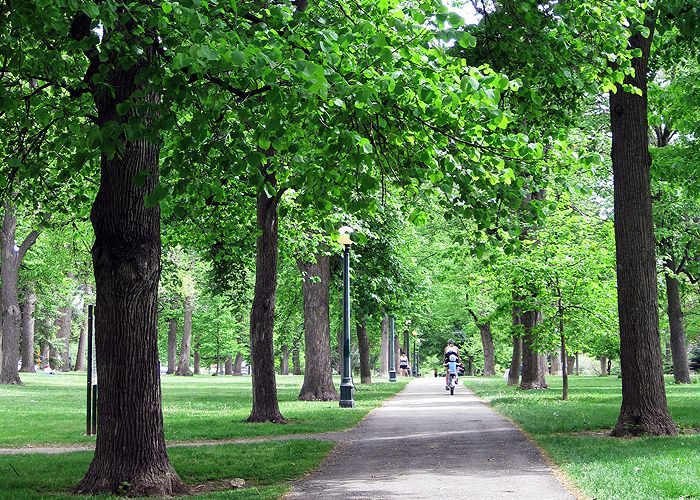 One of my favorite places to run....Cheesman Park: Denver, CO ...