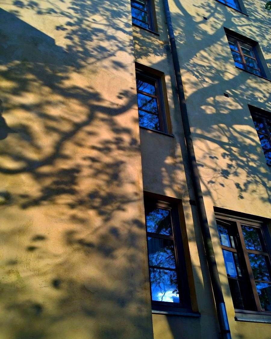 """Hetkeksi hiljaisuus saapui luokseni kuin olento ja huusi: """"Älä pelkää maailmaa."""" #paarisinkevät  saapui eilen mun pihalle. #kesäyö#aiettäonihanaa #koti#home#shadow#shawods#trees#house#oldbuilding#sunset#summernights#beautifulworld#turku#turkulove#windows#wall#natureart by riikakristiina"""