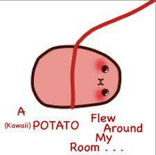Kết quả hình ảnh cho kawaii