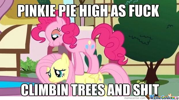 Image result for Pinkie Pie funny memes