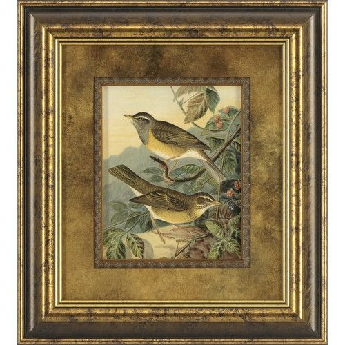 Ashton Wall Décor LLC Woodland Birds III Framed Painting Print ...