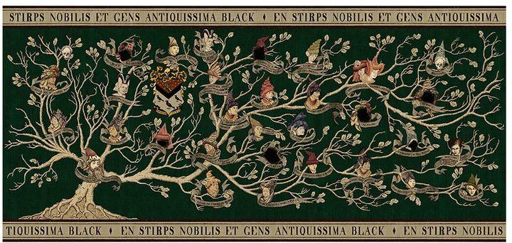 Harry Potter Black Family Tapestry Premium Print Arte De Harry Potter Arbol Genealogico De Harry Potter Arbol Genealogico