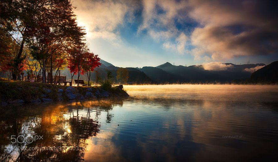 남이섬의 가을아침..